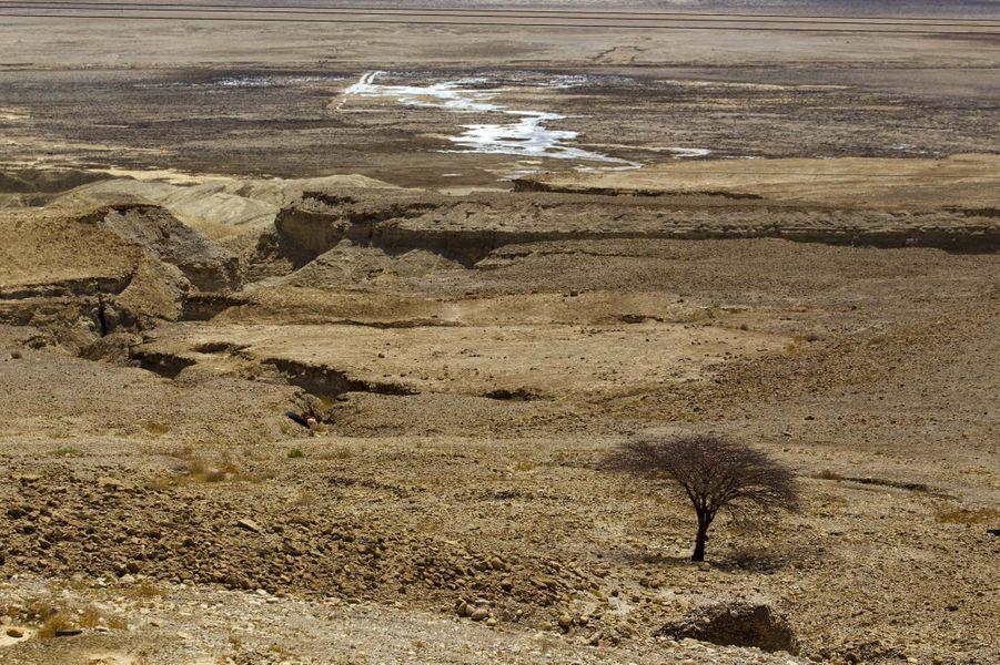 Le niveau des eaux de la mer Morte perd 1 mètre de hauteur chaque année.