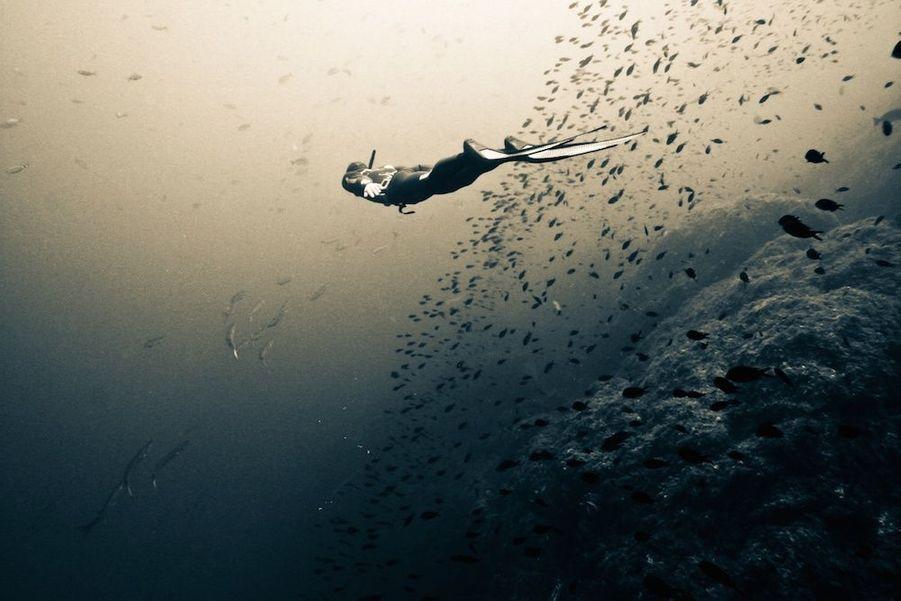 Le travail de Francine est sans fioritures : «Je plonge en apnée, sans bouteille, sans moyen pour respirer, sans lumière, autrement dit sans artifice autour» confie l'artiste. « Je montre ainsi vraiment, uniquement, ce qu'on peut voir quand on plonge avec un masque et un tuba.» Son but est ainsi de permettre aux gens de se rendre compte de ce qui se passe sous l'eau: «Il faut faire attention aux fonds marins, la pêche à outrance, le trafic maritime important et les déchets qui perturbent tout cet environnement.» .../...