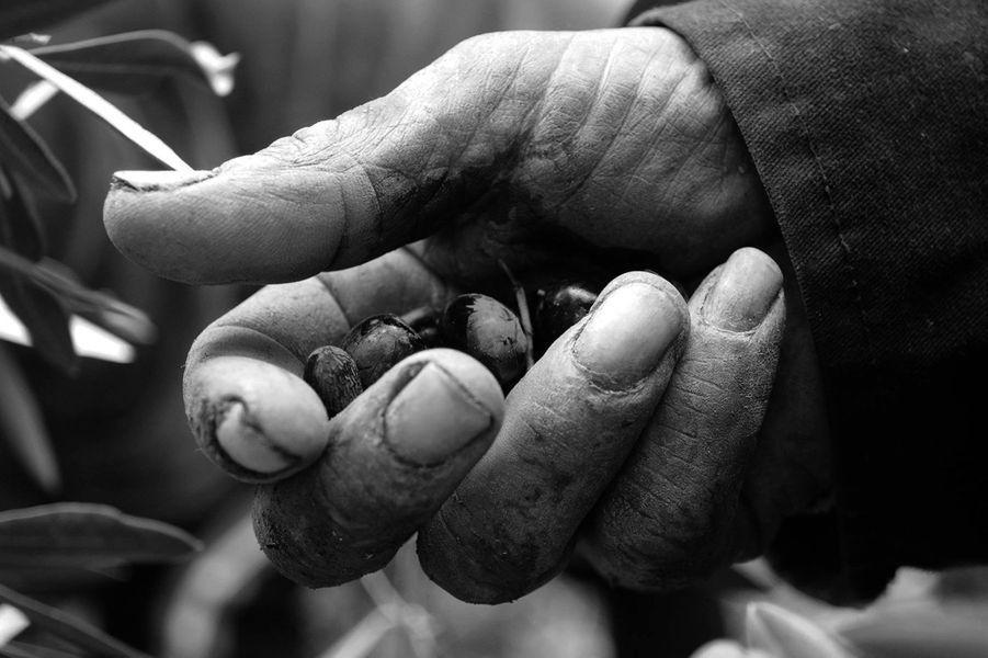 """""""Les mains du temps"""" , le 10 janvier 2014"""