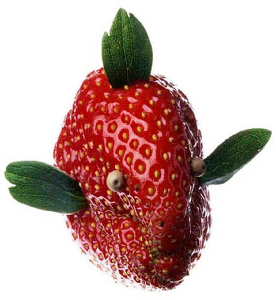 Poisson rouge à la fraise