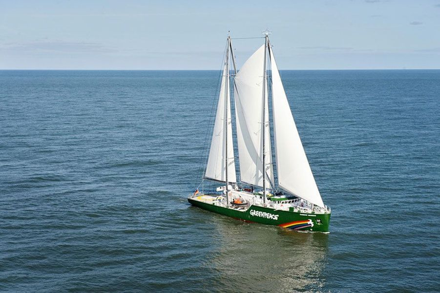 Le Rainbow Warrior III, 2011