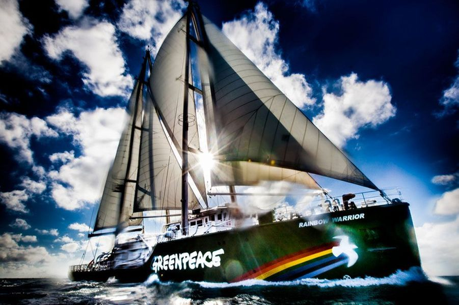 Le Rainbow Warrior III, 2013