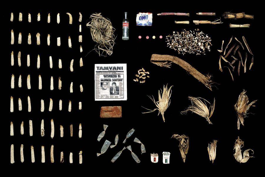 «Malawi», tout pour le végétal.