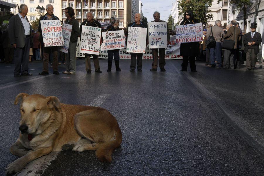Loukanikos dans une manifestation à Athènes le 15 décembre 2011