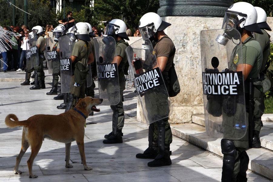 Loukanikos dans une manifestation à Athènes le 22 septembre 2011