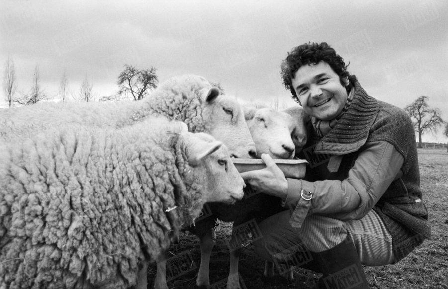 """""""Les trois sujets de fierté de Pierre : ses moutons, son billard français et son « zinc » authentique."""" - Paris Match n°1555, 13 mars 1979"""
