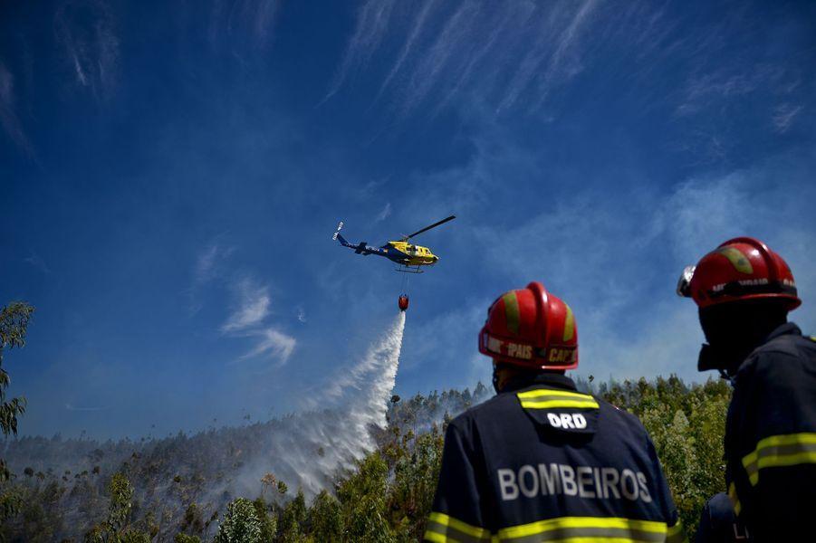 Portugal : Dans l'Algarve, les pompiers domptent les flammes