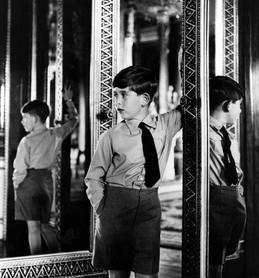 Le prince Charles photographiépar Antony Armstrong Jones,à Buckingham Palace pour son huitième anniversaire en 1956.