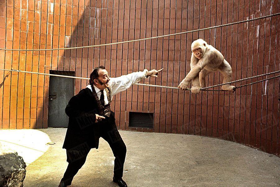 « Visitez aussi, en toute quiétude, avec lui, le zoo de Barcelone dans le parc de la Ciudadela. Vous y verrez un cas unique en zoologie : « Flocon de Neige », un singe albinos importé de Guinée espagnole. Et si Dali livre à ce monstre livide un mannequin paré d'un voile nuptial, ne criez pas au scandale. Ce n'est pas un acte dément. C'est un hommage rendu à un événement lourd d'avenir qui s'est déroulé à Barcelone pendant la Grande Guerre.» - Paris Match n°1055, 26 juillet 1969