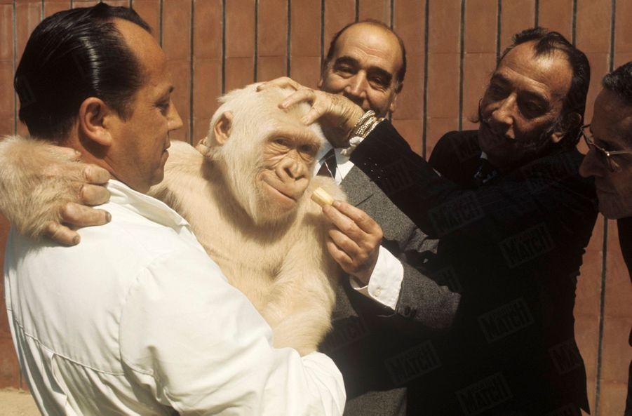 « À Barcelone comme à Paris, Dali a voulu célébrer des «happenings », c'est-à-dire des sketches dont le déroulement est abandonné au seul hasard. Au zoo de Barcelone, il a livré un mannequin en robe de mariée à un singe albinos. Les Anciens considéraient les albinos comme des êtres sacrés. Mais ce « happening » était aussi un hommage à son ami Marcel Duchamp et à sa « Mariée mise à nu par ces célibataires même ». Duchamp a vécu à Barcelone en 1915 en compagnie de Francis Picabia. De leurs recherches, accouplées au Dadaïsme de Tzara. devait naître le Surréalisme, ce surréalisme dont le symbole était un tamanoir. En 1969, Dali est descendu dans le métro avec un de ces tamanoirs et le hasard a comblé à la fois Dali et le tamanoir, puisqu'à la station Bastille, celui-ci a trouvé sur le sol un lait dont il est très friand. Mais le lait est aussi un symbole dalinien : l'angélisme.» - Paris Match n°1055, 26 juillet 1969