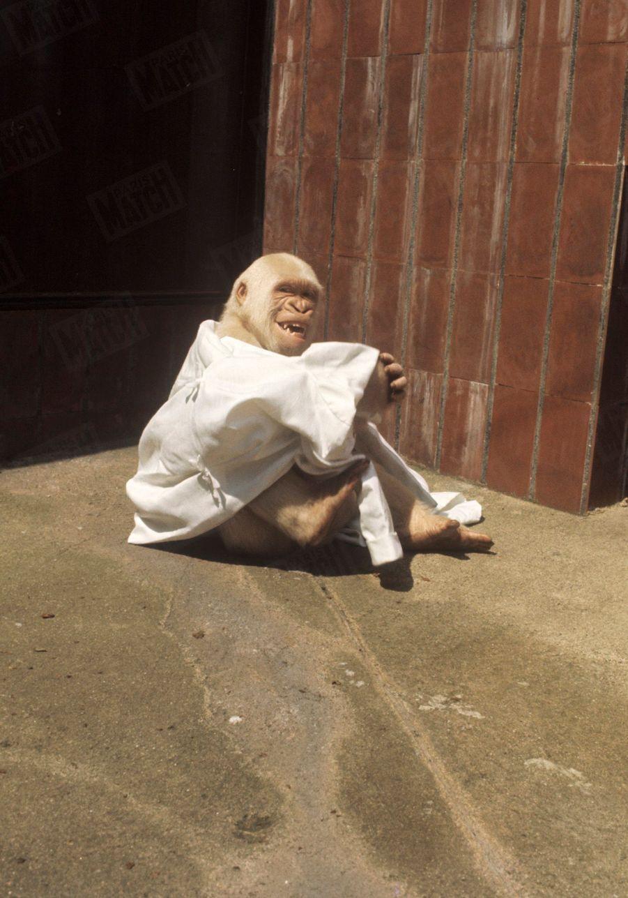 « Regardez ce qu'on n'a encore jamais vu et ce qu'on ne reverra plus jamais: Le monstre divin mettant à nu la mariée. », Salvador Dali dans Paris Match n°1055, 26 juillet 1969
