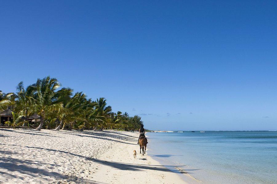 Sur l'île Maurice, il est possible de faire des balades à cheval