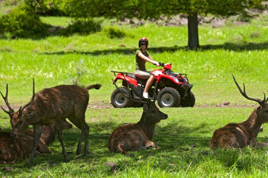 Sur l'île Maurice, il est possible de faire des balades en quad
