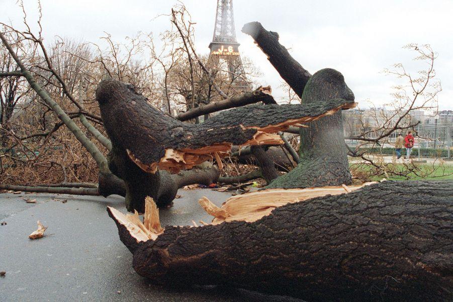 « Sur la tour Eiffel, le compte à rebours continue, mais les jardins du Trocadéro sont ravagés. Le long de la Seine, les rafales ont atteint plus de 170 km/h. En deux heures, la tempête avait traversé Paris. » - Paris Match n°2641, 6 janvier 2000.
