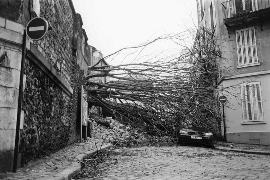 Les dégâts causés par la tempête à Montmartre, à Paris en décembre 1999.