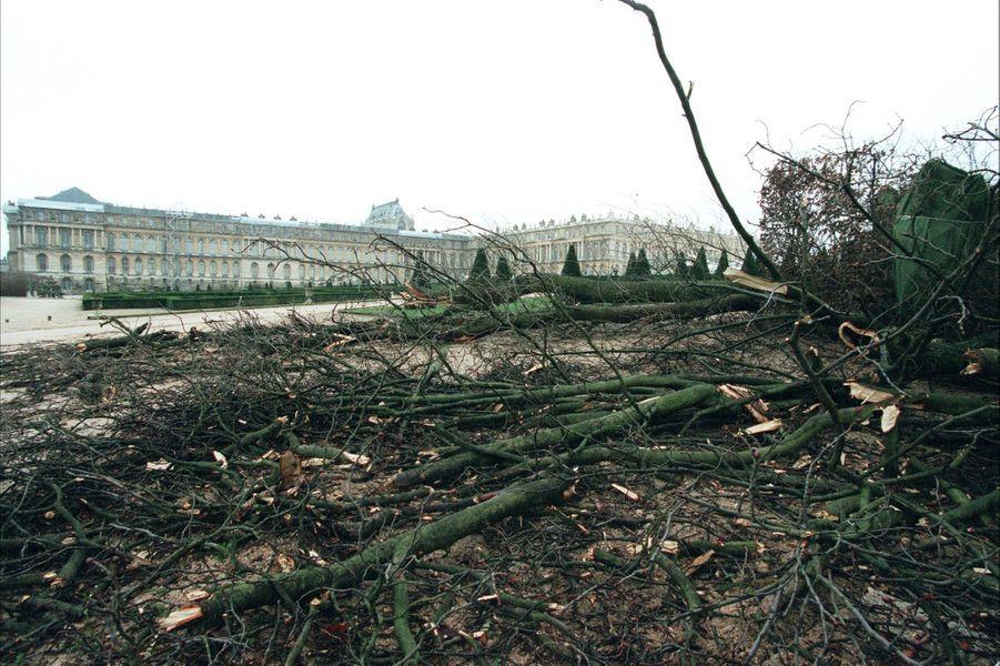 « Le chaos règne à Versailles. Louis XIV avait voulu un parc à l'image de sa cour, où la nature serait élégante, ordonnée, obéissante. Il avait fait construire son château loin de Paris, pour qu'il soit protégé des tempêtes... politiques. Trois siècles et demi plus tard, un coup de vent historique s'abat sur le symbole de son régime. Des plaques de plomb envolées des toitures, certaines souillant la cour d'honneur, des fenêtres descellées, et plus de 10 000 arbres arrachés ou brisés. « Les jardins de Versailles étaient le centre du monde organisé que Louis XIV dominait », explique Pierre-André Lablaude, l'architecte en chef en charge du parc. Mais ce 26 décembre, le monde n'était plus dominé, encore moins ordonné, par un roi. Ni par les hommes. » - Paris Match n°2641, 6 janvier 2000.
