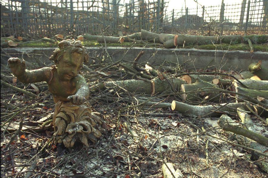 Les dégâts causés par la tempête à Versailles en décembre 1999.