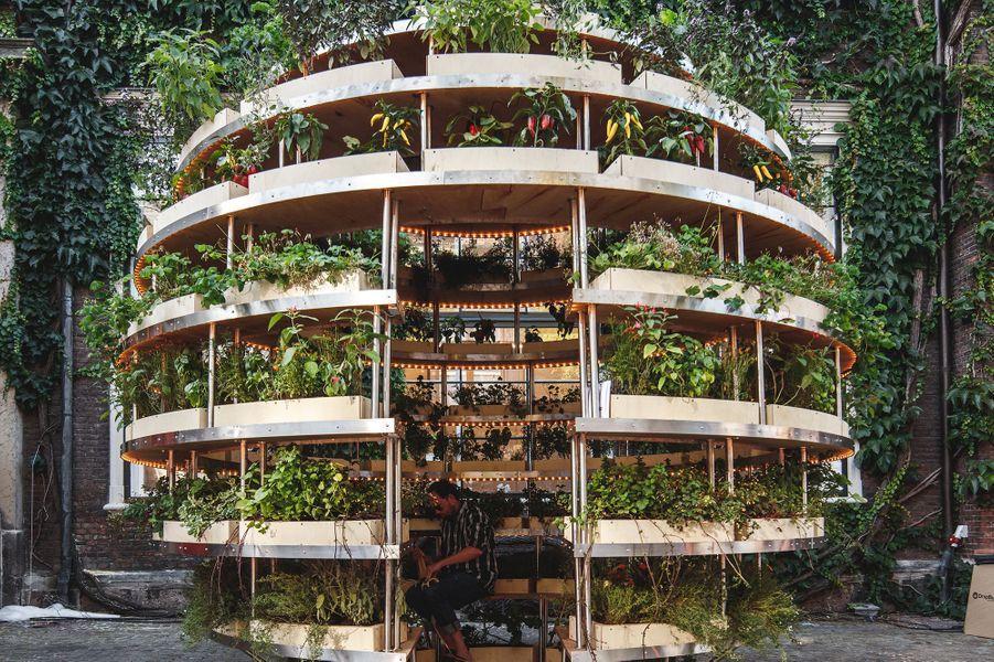 Growroom est un potager capable de réguler automatiquement le besoin de ses végétaux