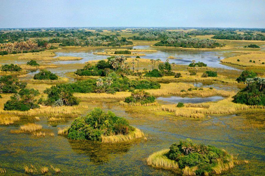 Le Botswana alterne entre verdure et aridité