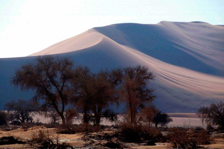 Le désert de Namibie compte parmi les plus connus au monde