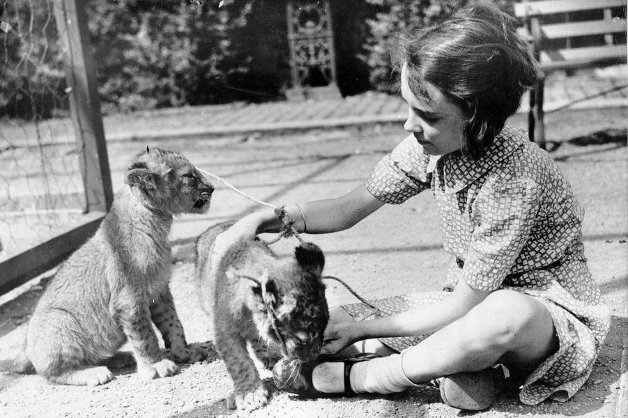 June Williams est la fille de George Mottershead, qui a ouvert le zoo de Chester, le plus grand du Royaume-Uni. Elle a grandi aux côtés de pingouins, lions et autres singes, compagnons de jeu idéal pour une petite fille modèle.