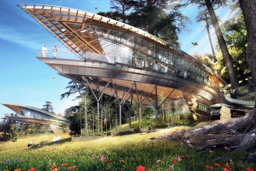 Un projet de résidences parfaitement intégrées à une forêt de cèdres. La forme générale de ces chalets et leur structure sont inspirée par le contour et les nervures des feuilles.