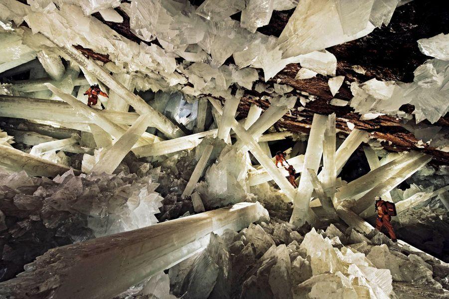 Ces prodiges de la nature pourraient être des décors artificiels de science-fiction. Sous nos pieds, les grottes abritent des mondes perdus, des paysages irréels parmi les plus beaux sites jamais recensés. Déserts de glace, forêts de pierre millénaires, galeries de miroirs aux reflets de feu, couloirs creusés par l'eau aux couleurs magiques, cavités sanctuaires... Des territoires qui ne sont accessibles qu'aux spéléologues aguerris. Comme les grottes de Naica, situées à 300 mètres sous le niveau de la mer dans le nord du Mexique. Une jungle de cristaux géants où la chaleur approche 60 °C et l'humidité frôle les 100 %. Un homme sans équipement ne pourrait pas y survivre plus de huit minutes. Les seuls occupants sont les gypses taillés comme des épées qui peuvent atteindre 10 mètres de long et peser 50 tonnes, quand les plus grands cristaux mesurés à la surface du globe dépassent à peine les 20 centimètres.La « Grotte aux cristaux géants », sous le désert de Chihuahua au Mexique, a été découverte accidentellement par des ouvriers de la mine de Naica, et explorée cette année par des biologistes et des membres de la Nasa.