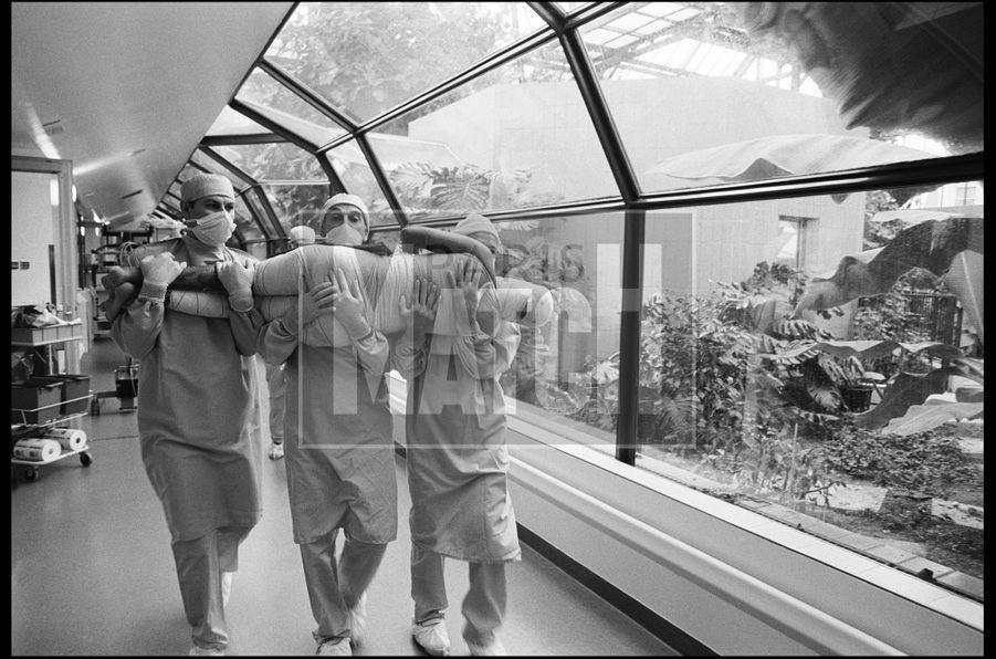 Raphaël Gaillarde: Centre de traitement des brûlés. Hôpital Percy, Clamart, France, 13 avril 2000