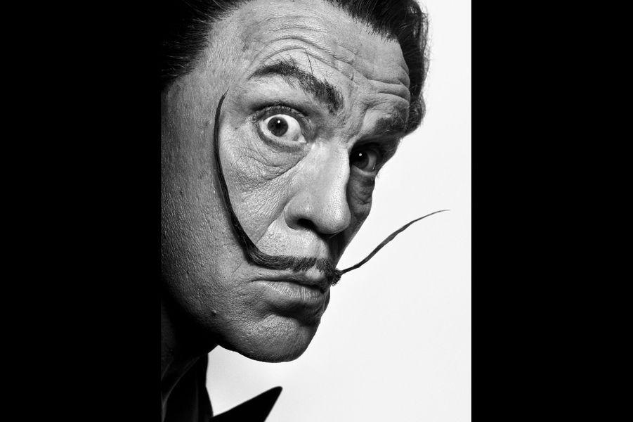 """D'après """"Dali's Mustache"""" de Philip Halsman, 1954"""