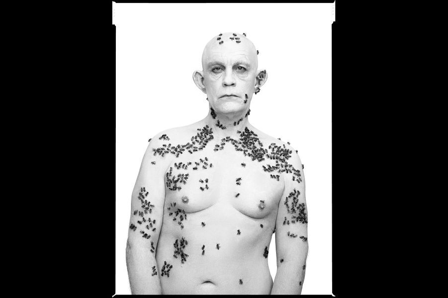 """D'après """"Ronald Fischer Beekeeper"""" de Richard Avedon, 1981"""