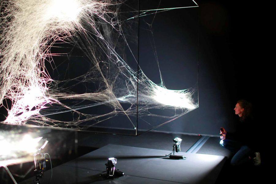 Immersion dans l'exposition du plasticien argentin TomasSaraceno, au Palais de Tokyo.