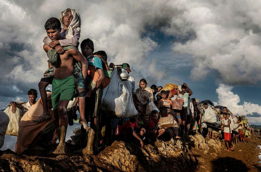 Palong Khali, Bangladesh, 9octobre 2017. Des milliers de réfugiés rohingyas ont fui leurs villages, marché pendant des jours et enfin franchi la frontière. Épuisés, ils continuent en traversant des rizières.
