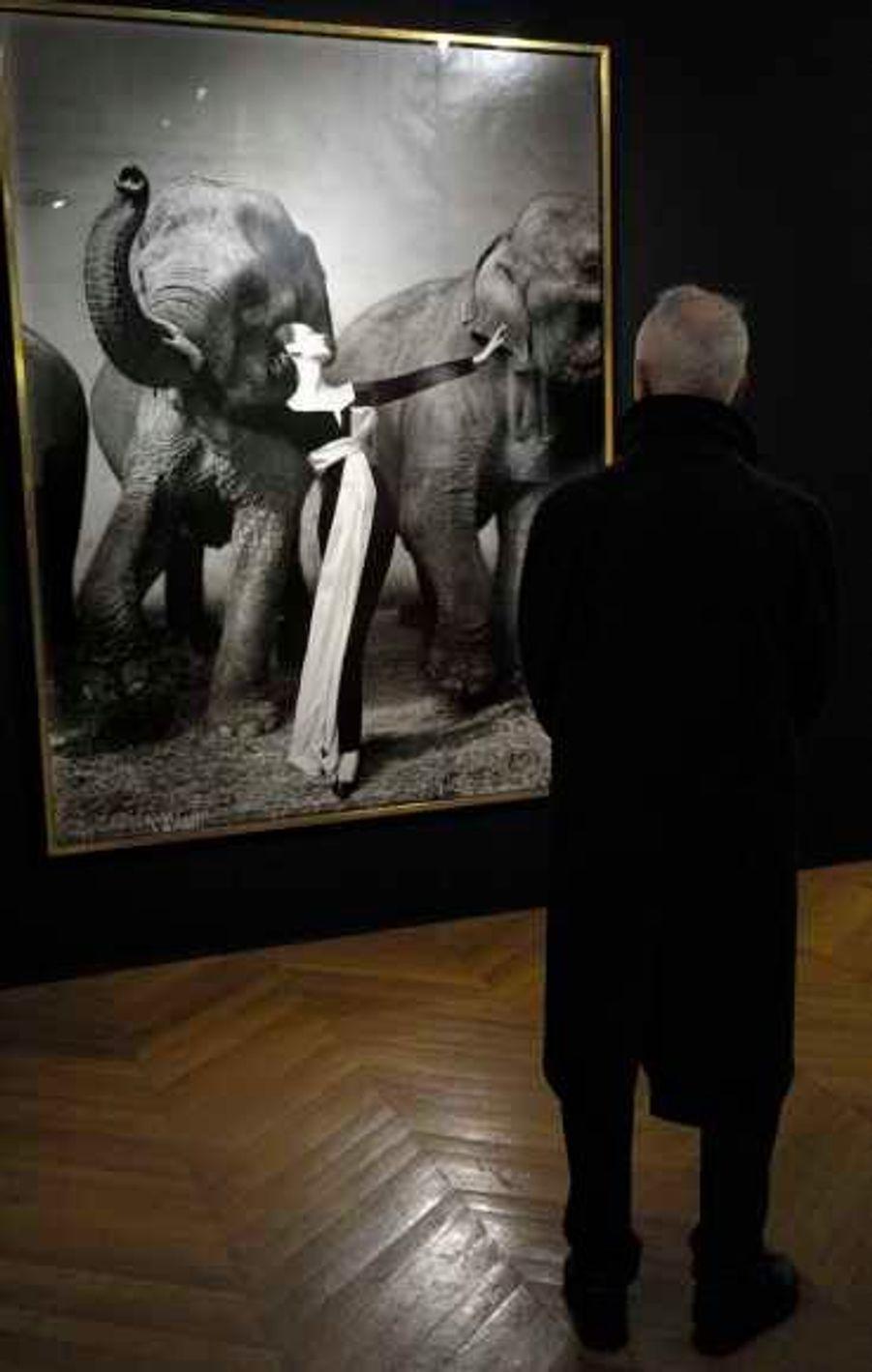 Dovima avec les éléphants, robe du soir de Dior, Cirque d'Hiver, Paris, août 1955.Tirage argentique unique d'exposition, monté sur lin. Il est le plus grand réalisé pour cette image. Exécuté pour la rétrospective d'Avedon sur la mode au Metropolitan Museum of Art en 1978, il a aussi été accroché 25 ans durant à l'entrée du studio de l'artiste à New York. Cette pièce unique est estimée entre 400 000 et 600 000 euros.