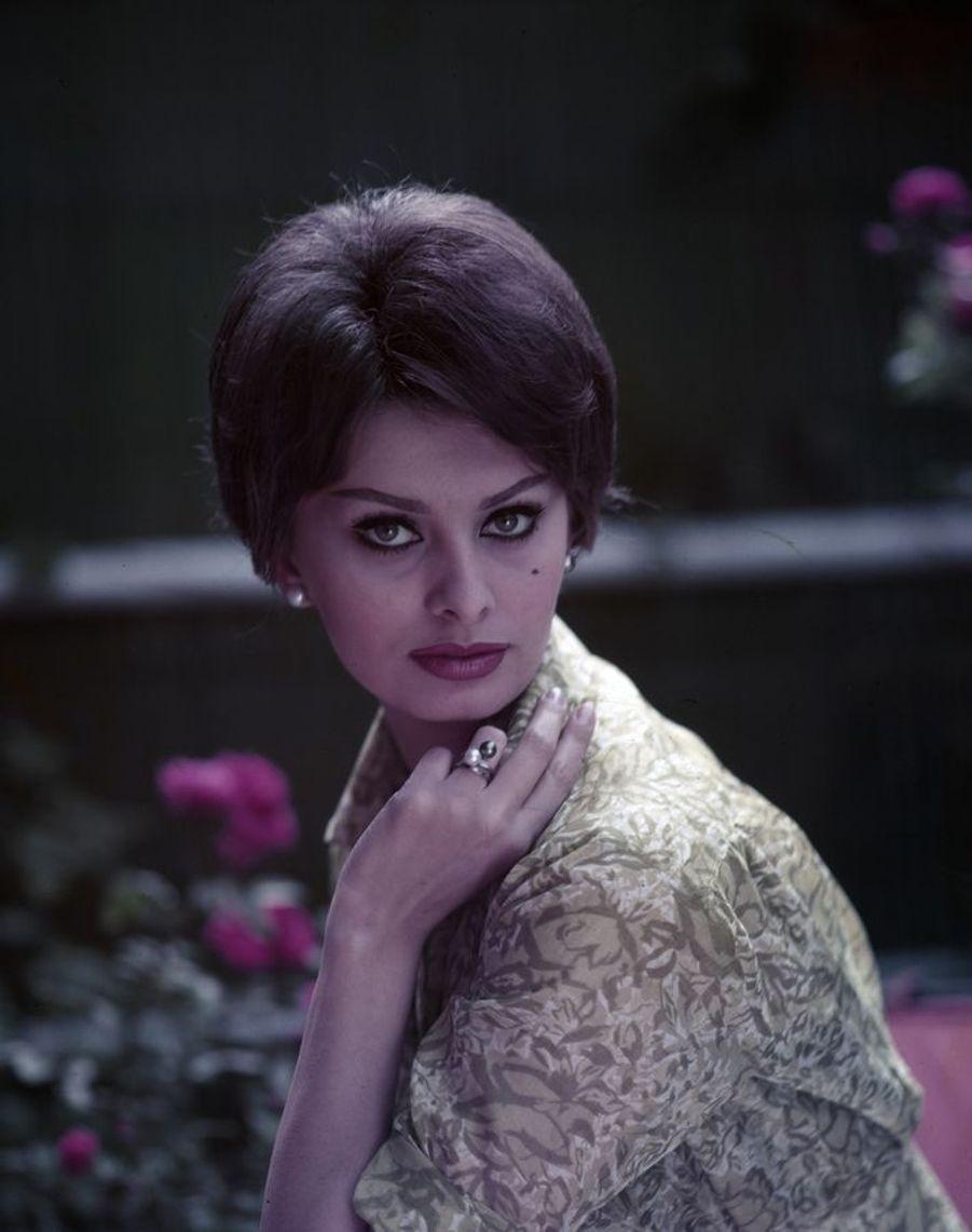 Sophia Loren, par François Pagès (1929-1995).Sophia Loren, en 1960. Son regard de biche et sa moue sensuelle ont fait chavirer l'Amérique. Après s'être imposée à Hollywood, la Napolitaine de 26 ans est à l'affiche de La Ciociara, de Vittorio De Sica, aux côtés de Jean-Paul Belmondo. Sa prestation lui vaudra bientôt l'oscar de la meilleure actrice et le prix d'interprétation féminine au Festival de Cannes.LOT N°011 - Tirage postérieur sur papier baryté - Édition 1/1 - 80 x 63 cm - Encadrement bois noir et passe-partout tournant.