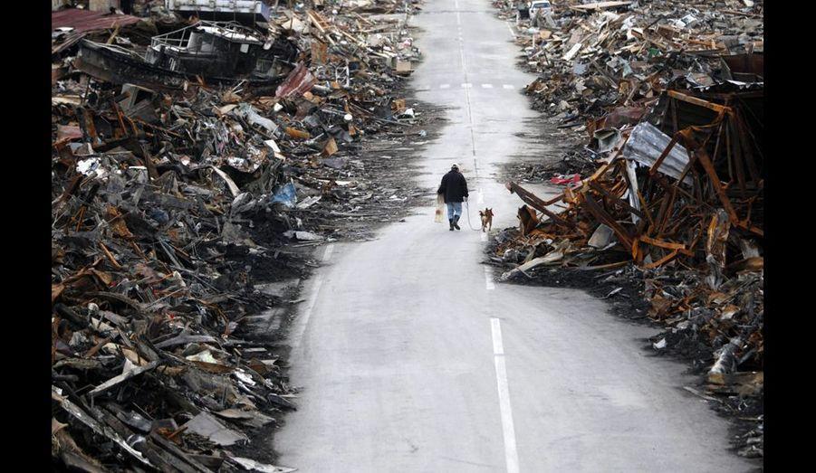 Kesennuma, préfecture de Miyagi. Près de deux semaines après le séisme et le tsunami, un homme promène son chien dans un quartier résidentiel dévasté. Photo Issei Kato/Reuters.