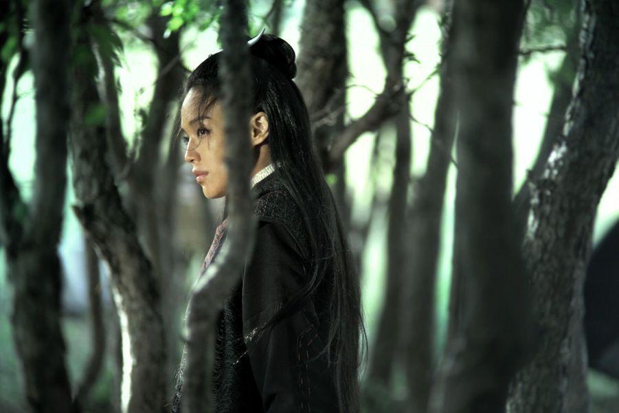 Au neuvième siècle, en Chine, une femme-assassin de haute naissance doit choisir entre sacrifier l'homme qu'elle aime ou rompre avec son engagement avec la guilde des assassins.