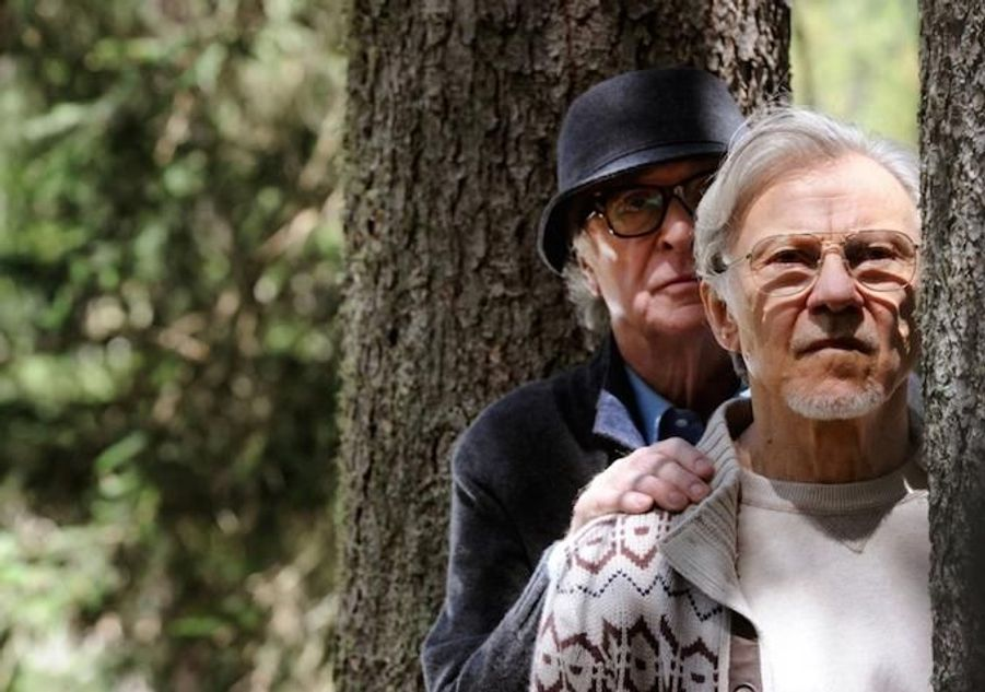 Fred et Mick, deux vieux amis approchant les quatre-vingts ans, profitent de leurs vacances dans un bel hôtel au pied des Alpes. Fred, compositeur et chef d'orchestre désormais à la retraite, n'a aucune intention de revenir à la carrière musicale qu'il a abandonnée depuis longtemps, tandis que Mick, réalisateur, travaille toujours, s'empressant de terminer le scénario de son dernier film. Les deux amis savent que le temps leur est compté et décident de faire face à leur avenir ensemble. Mais contrairement à eux, personne ne semble se soucier du temps qui passe.