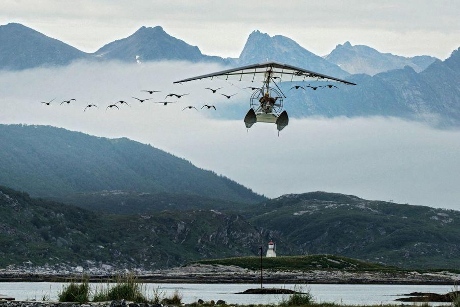 Août 2018, Norvège, ça tourne ! Christian Moullec conduit sa flottille au-dessus de l'île de Sommaroy. Il n'y a qu'avec lui que les oies acceptent de voler.