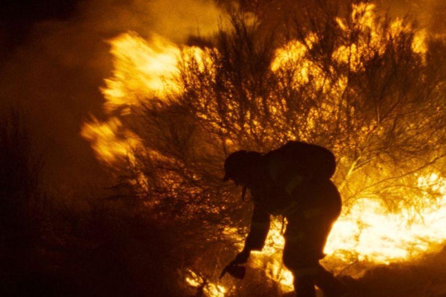 «Viendra le feu» d'Oliver LaxeLe synopsis : Lorsque Amador Coro sort de prison pour avoir provoqué un incendie, personne ne l'attend. Il retourne dans son village reculé dans les montagnes, dans les profondeurs de la Galice rurale où il vit avec sa mère âgée, Benedicta, et trois vaches. Leurs vies s'écoulent lentement, au rythme apaisé de la nature. Jusqu'au jour où un feu vient à dévaster la région.