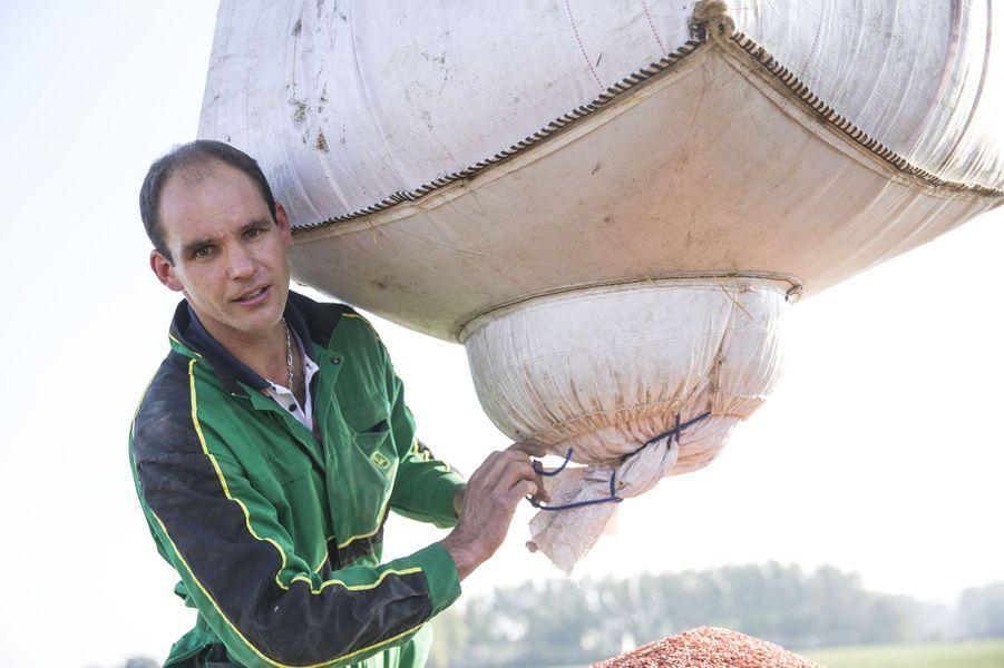 Charles-Henri, 36 ans, éleveur de vaches et céréalier (Pas-de-Calais)