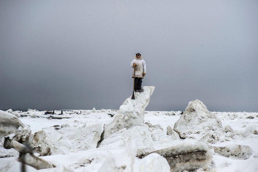 Arctique, Alaska, Point Hope, chasse à la baleine, mai 2018Prix Carmignac du photojournalisme