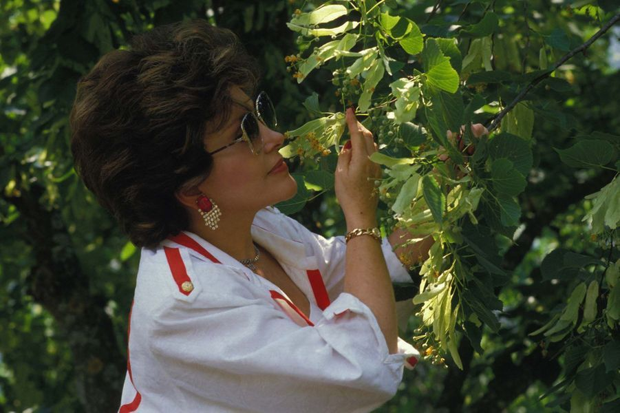 La chanteuse Rika Zaraï à Buis-les-Baronnies dans la Drôme le 3 juillet 1986, France.