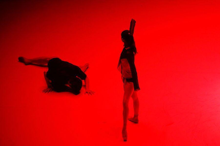Des danseurs des ballets de Chine et de France ont partagé la scène.