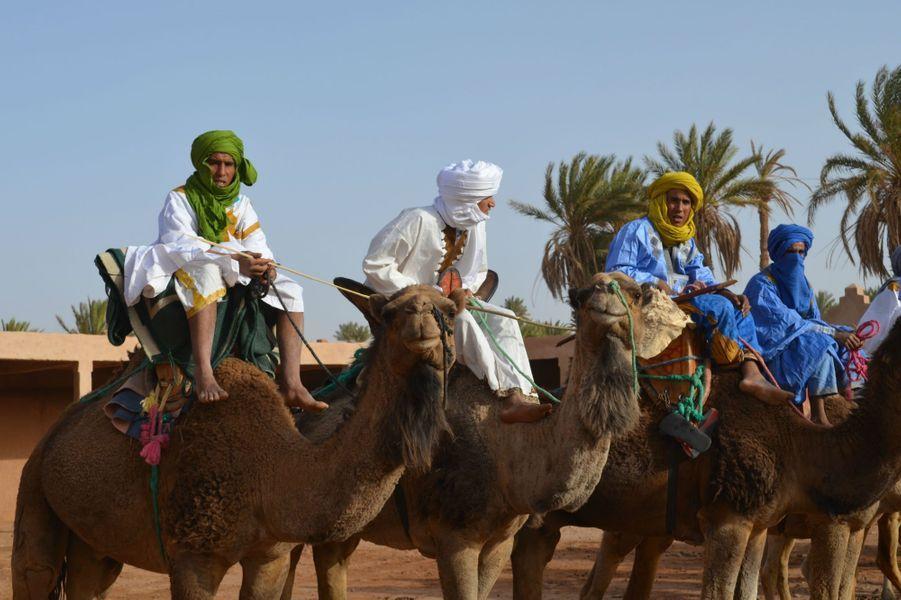 Démonstration de course de dromadaires,Festival international des Nomades à M'hamid El Ghizlane, Zagora, Maroc. Mars 2017.