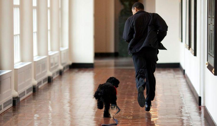 Barack Obama a un nouvel ami, Bo, un chien d'eau portugais offert par Ted Kennedy.