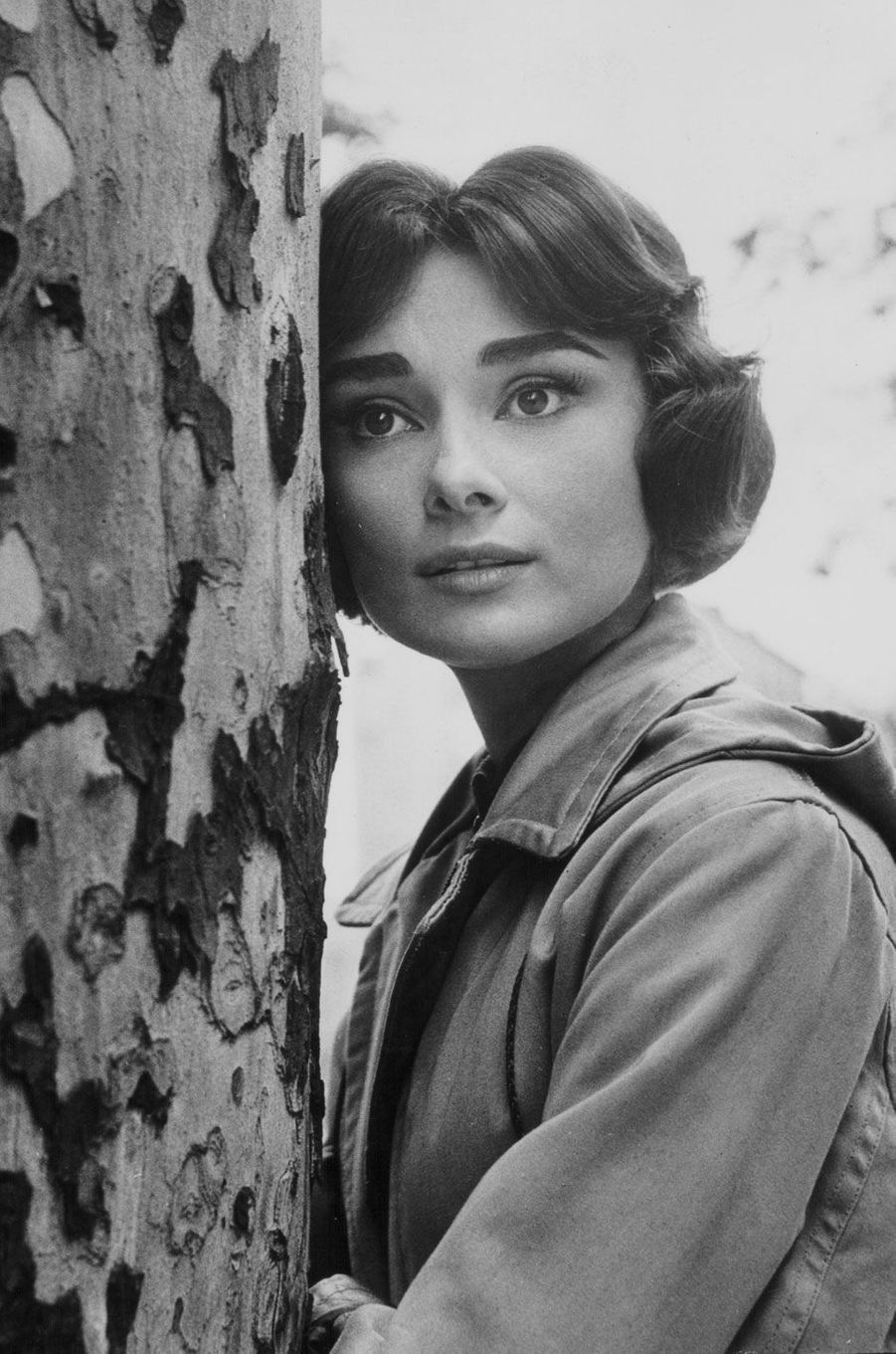 Audrey Hepburn en 1951