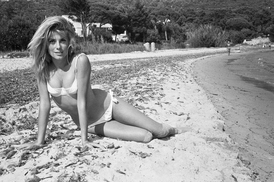 Catherine Deneuve, sur la plage en 1962.
