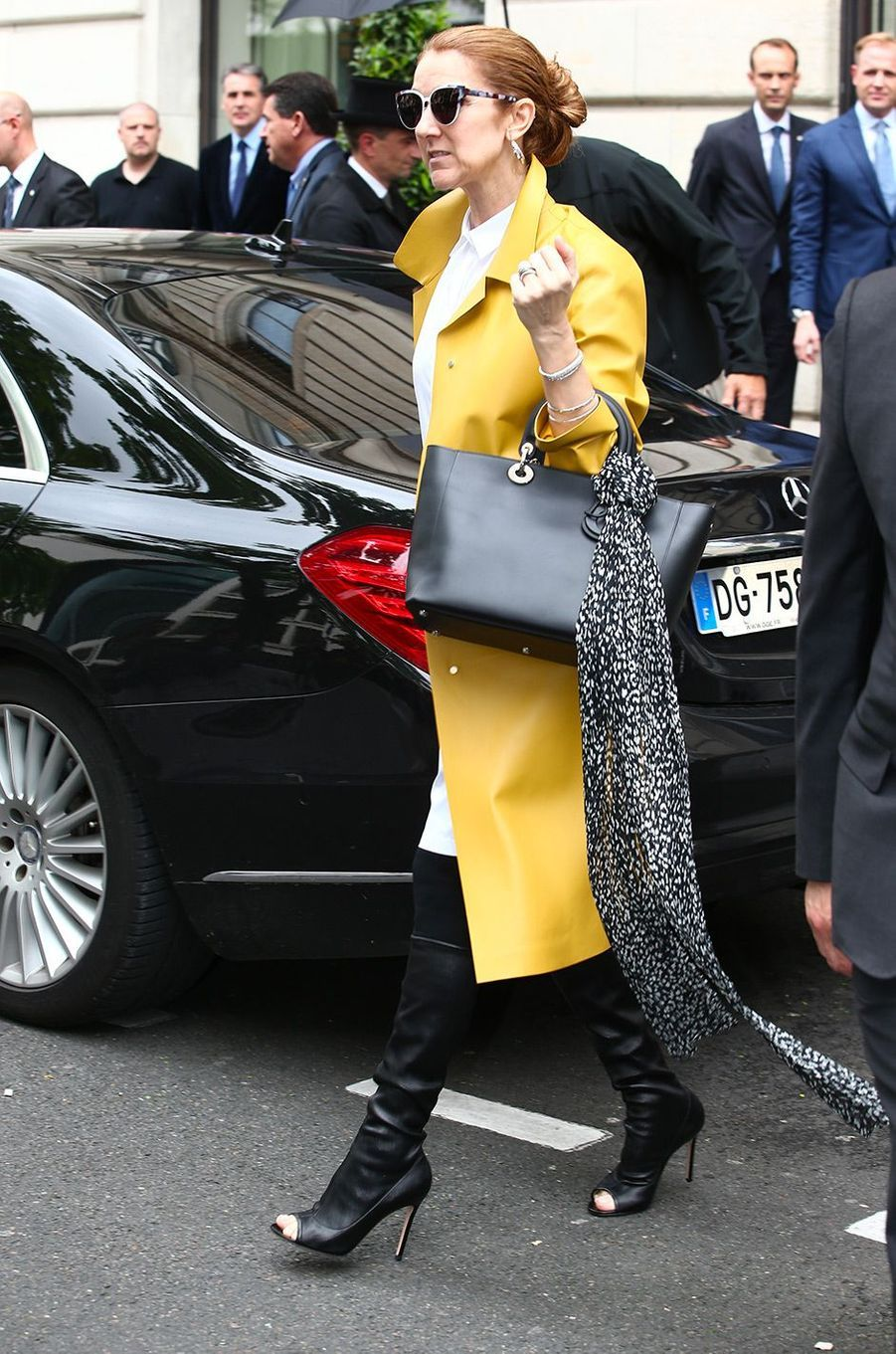 Céline Dion, à Paris le 21 juin 2016