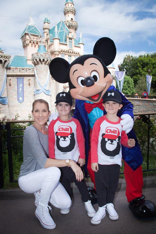 Céline Dion est devenue maman des jumeaux Eddy et Nelsonà 42 ans.