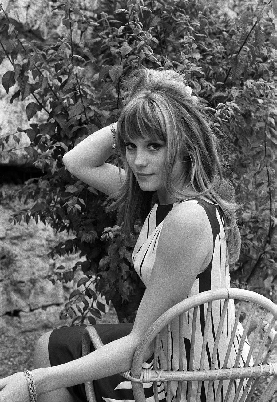 Françoise Dorléac en 1964. L'actrice est morte en 1967 à 25 ans lors d'un violent accident de voiture.